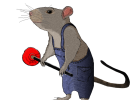 Rat Plumber WIP